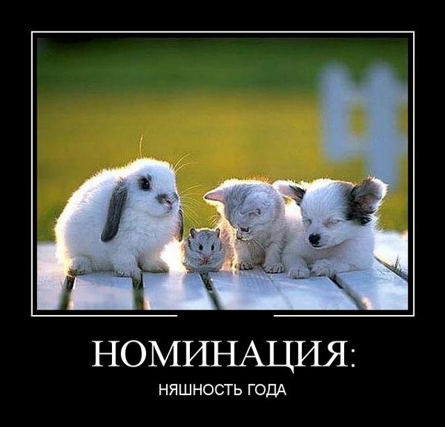 https://img-fotki.yandex.ru/get/966391/3588041.3126/0_160183_fddc9971_orig.jpg