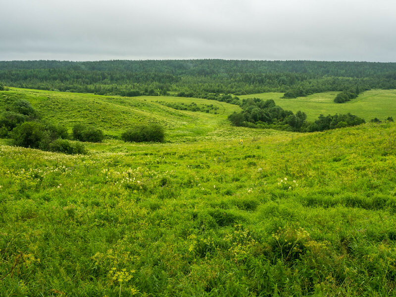 Дорога на Холмогоры: пейзажи справа