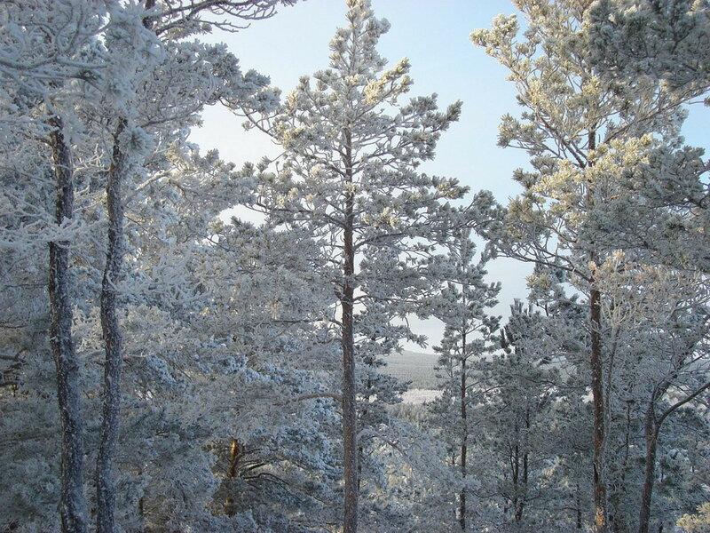 Красота зимней Зеренды. Автор- Евгения Шамрай. p07.jpg