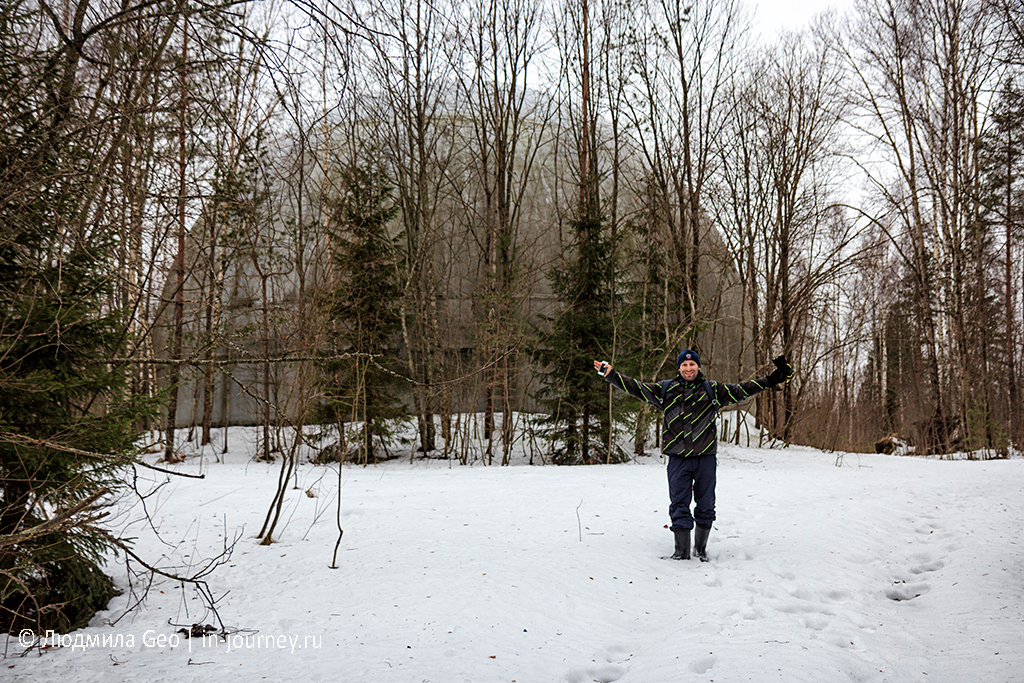 на фоне шара в лесу