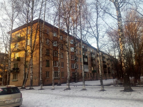 Бестужевская ул. 15