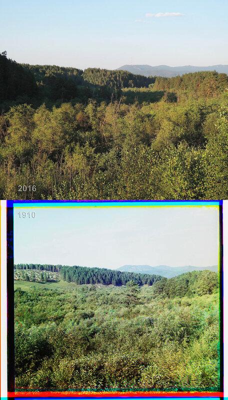 Заготовка дров в горах.