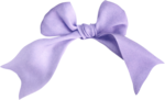 emeto_Ponies and bows_bow2 violet.png