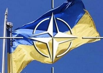 Парламентская ассамблея НАТО осуждает Россию