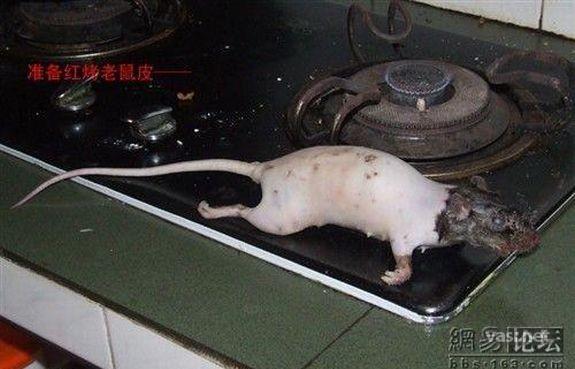 Как готовится крысиная тушенка