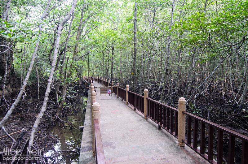Видимо, должен еще быть мангровый лес, но он закрыт.