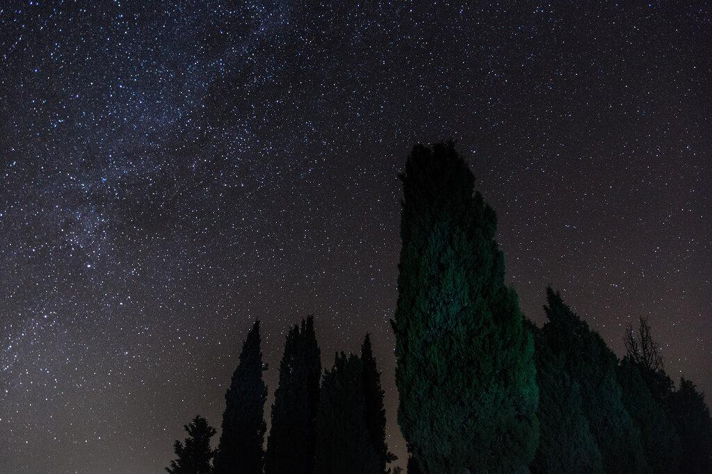 tuscany-0502.jpg