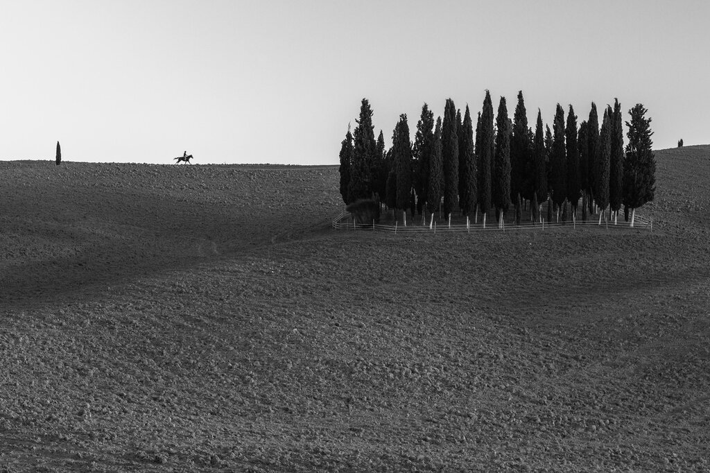 tuscany-0434.jpg