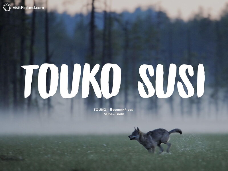 touko-susi-2ru.jpg