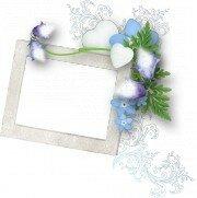 http://img-fotki.yandex.ru/get/9666/97761520.454/0_8dab0_26d2a69d_L.jpg