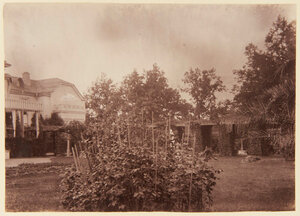 42. Сад Фермерского дворца