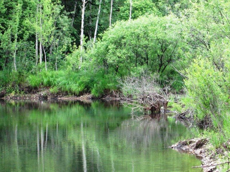 озера раздольного