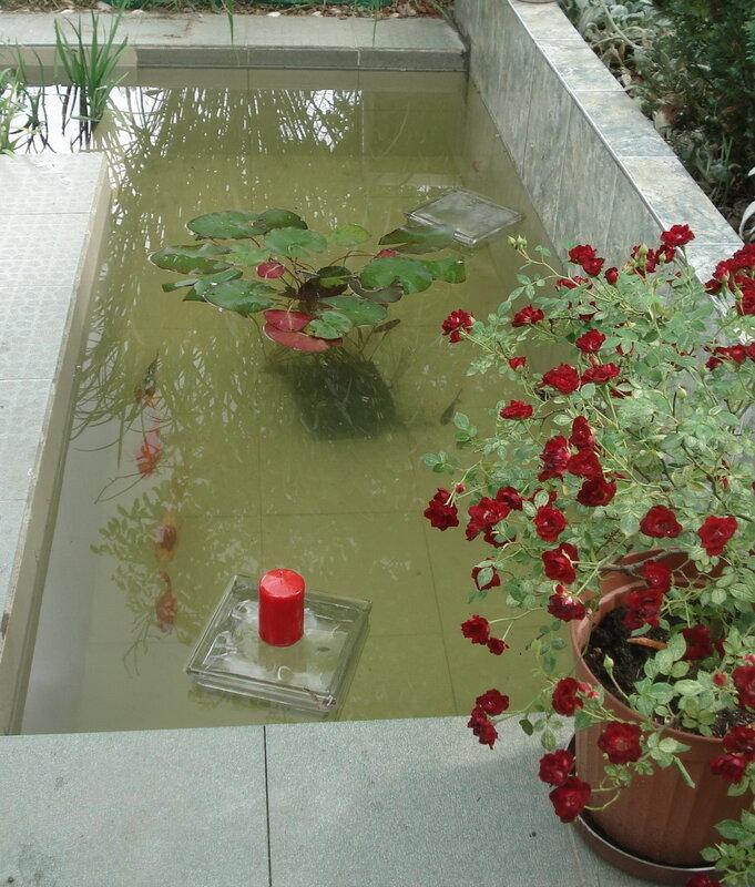 http://www.triinochka.ru/ Рыбки в бассейне 1.jpg