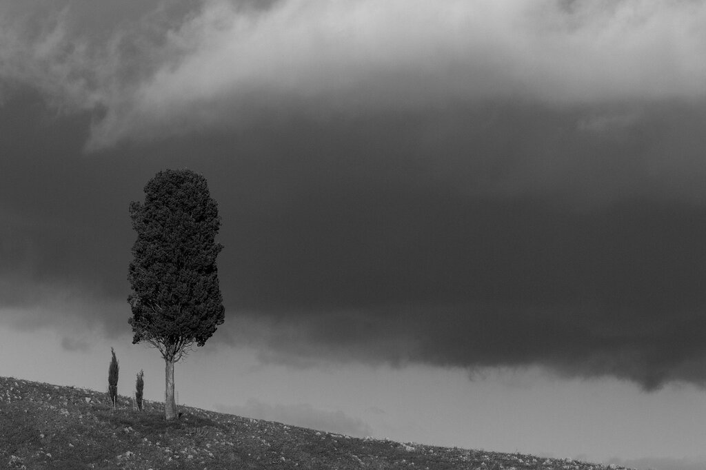 tuscany-0384.jpg