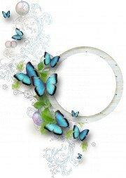 http://img-fotki.yandex.ru/get/9667/97761520.455/0_8dab1_927a063c_L.jpg