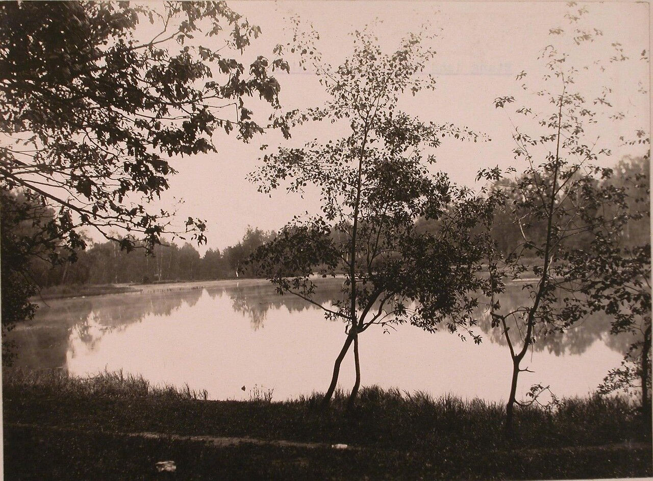 Общий вид пруда в усадьбе Шереметевых