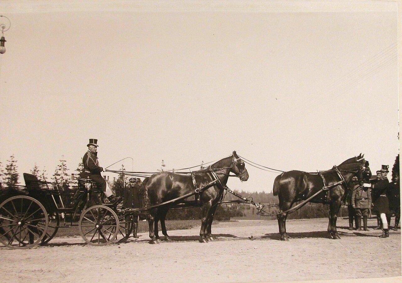 35. Экипаж, запряженный четверкой лошадей, у здания Беловежского дворца