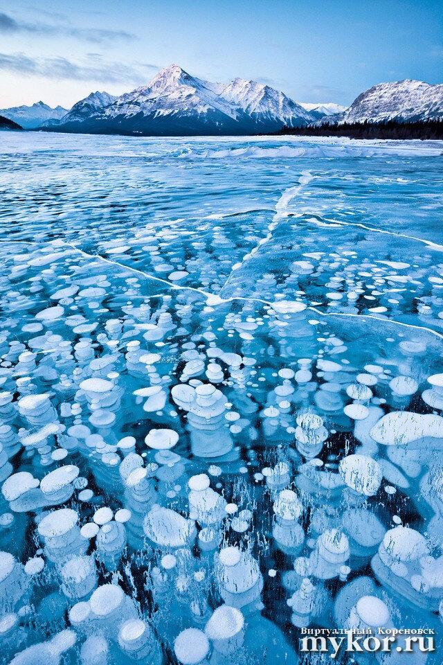 Ледяные пузыри фото