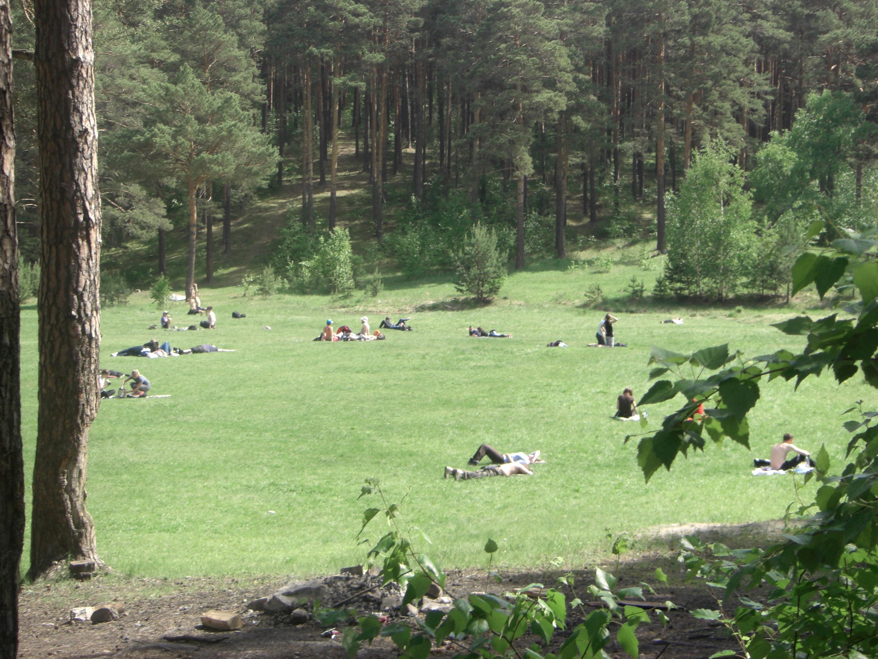 Поляна возле Сугомакской пещеры просто создана для отдыха (04.06.2014)