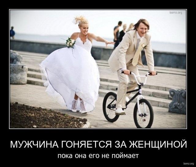 81331732_gonki_za_zhensch.jpg