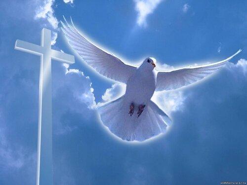 дух святой-2.jpg