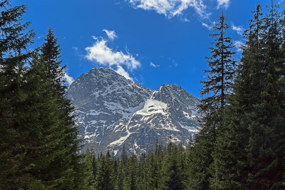Последний взгляд на горы