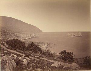 Вид территории сада и виноградников на склоне горы вблизи побережья. Гурзуф.