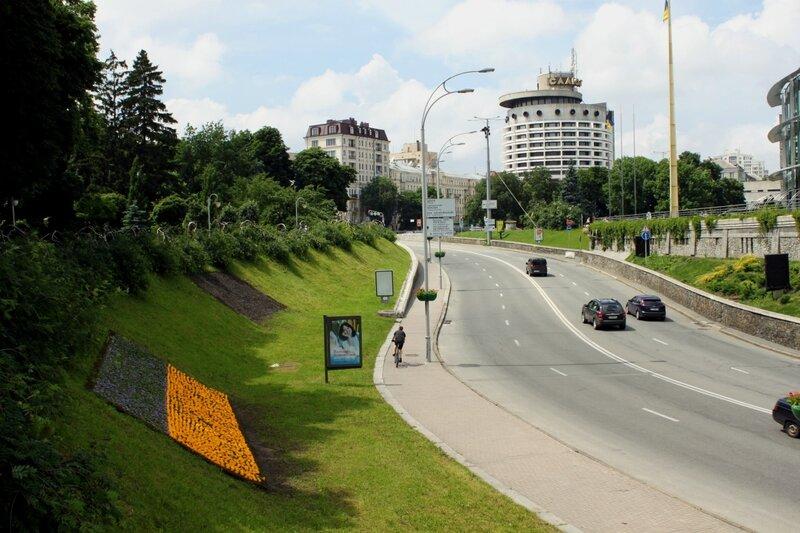 Флаг Украины из цветов