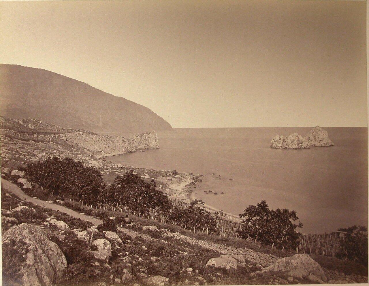 32. Вид территории сада и виноградников на склоне горы вблизи побережья