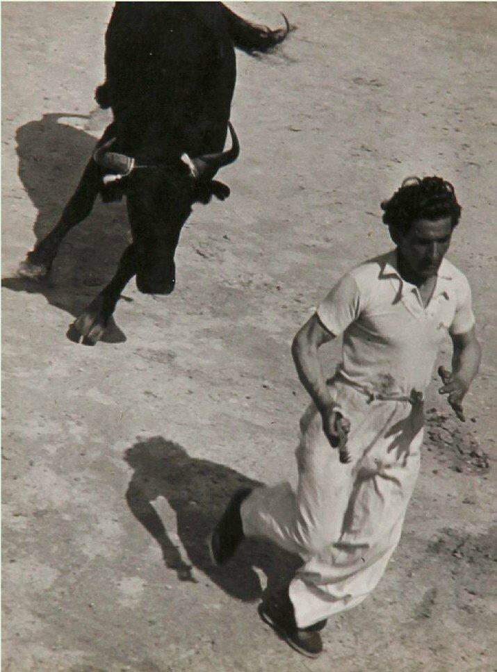 1936.  Гонки с быками в Провансе, Сент-Мари-де-ла-Мер. Часть 5