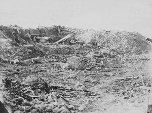 02. Брошенные орудия возле амбразуры Редана. 8 сен 1855
