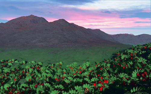 пейзаж с цветочками