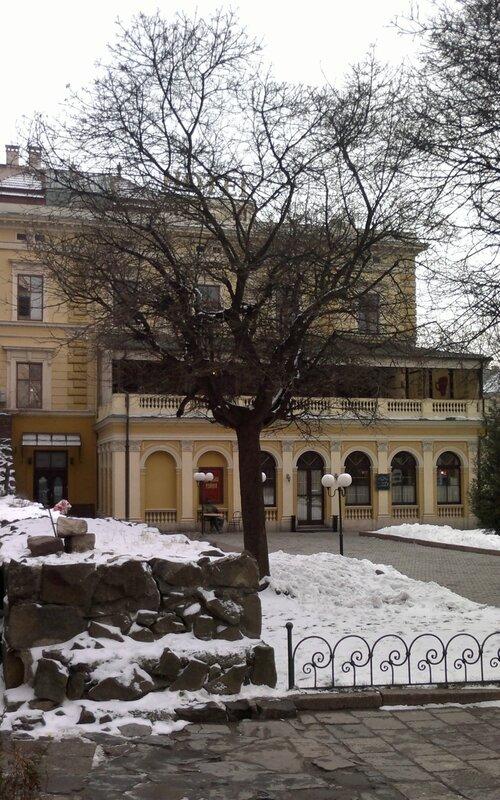 «Подо Львом (Зимой 2013 го)»