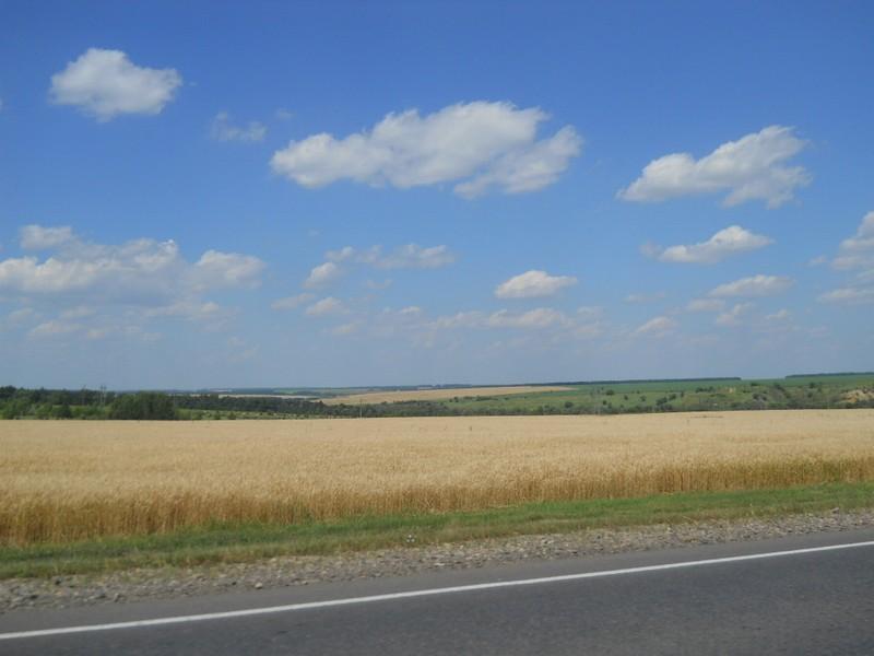 Один день между деревней и городом, в котором уместились 300 км дорог и две важные покупки.
