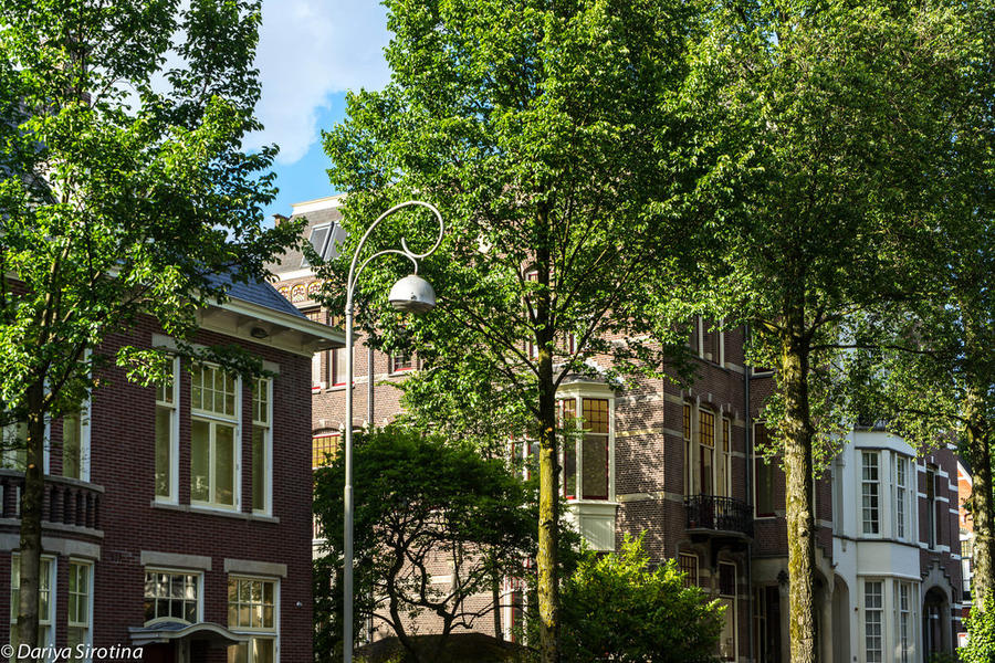 6. Как и в других частях Амстердама, тут очень зелено и очень красивые фонари. Вообще, Амстердам &#8