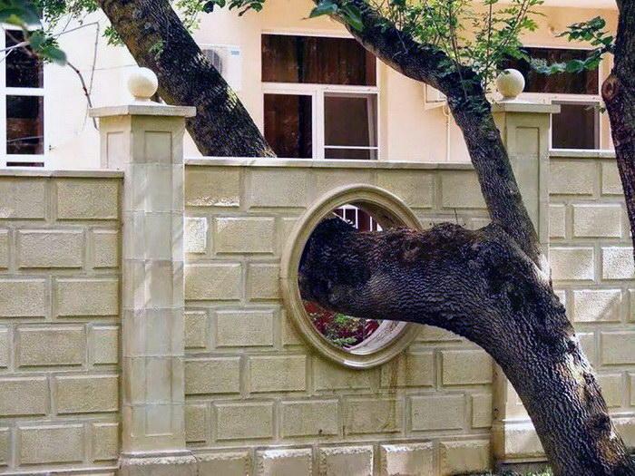 7. Дырка для дерева