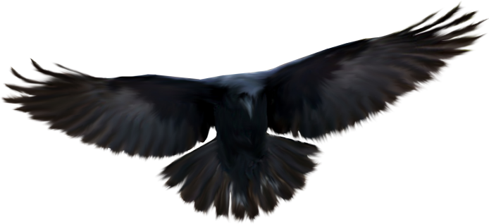 Raven2-GI_Witchcraft.png