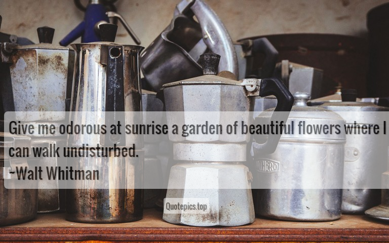 Give me odorous at sunrise a garden of beautiful flowers where I can walk undisturbed. ~Walt Whitman