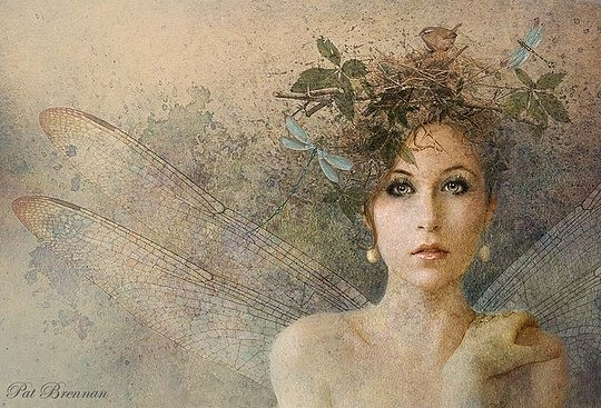 Hot Digital Art by Pat Brennan