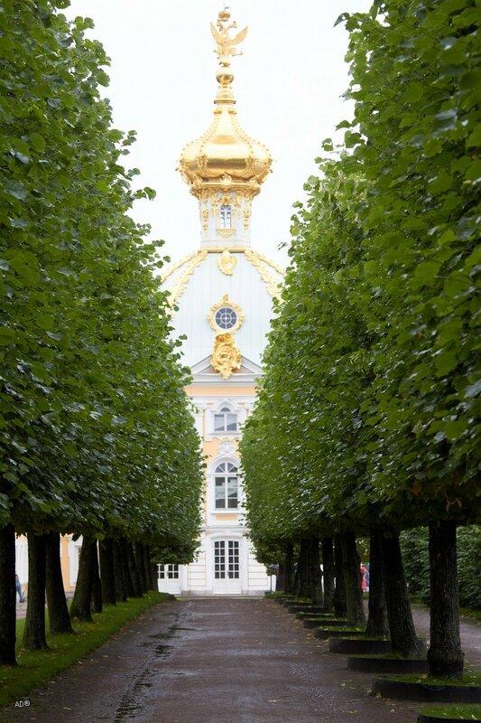 Западный павильон Большого Петергофского дворца - Корпус «Под гербом»
