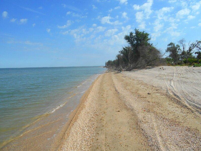 На песчаном берегу ... DSCN6674.JPG