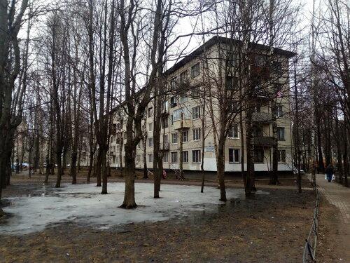 Светлановский пр. 99к2