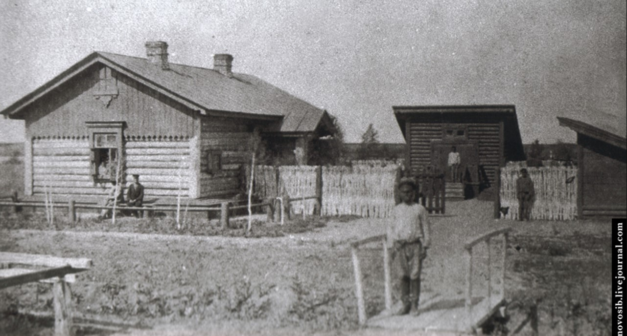 Жилые дома в поселке