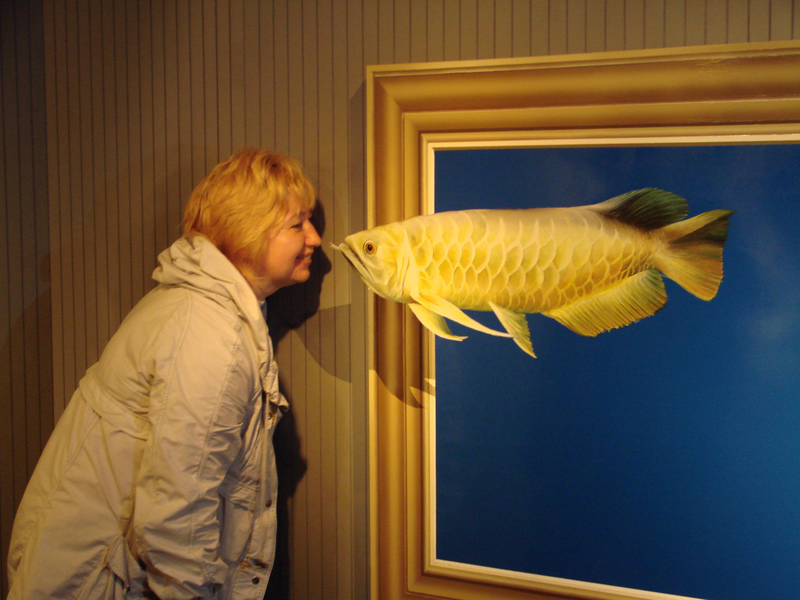 Япония. Музей оптический иллюзий 3D в Такао/Japan Takao Trick Art Museum.