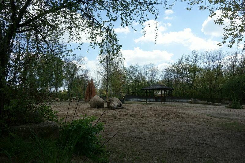 Путешествия: Зоо и сафари в городе Двур Кралове над Лабем