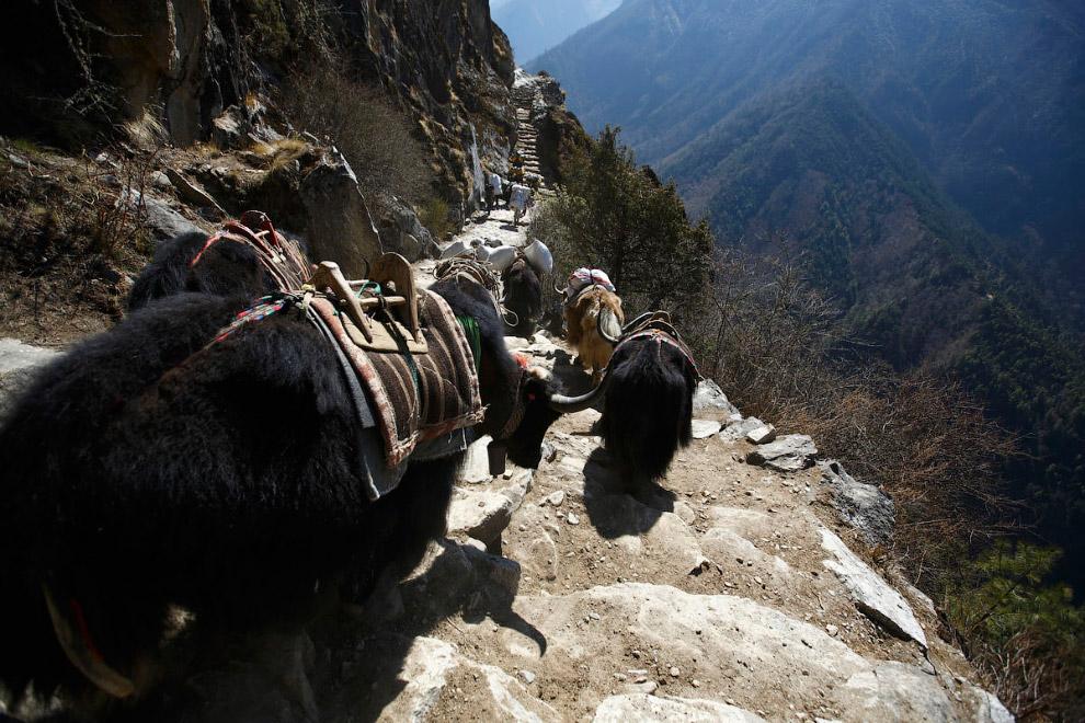 29. Базовый лагерь Эвереста на высоте примерно 5 300 метров над уровнем моря. (Фото Navesh Chit