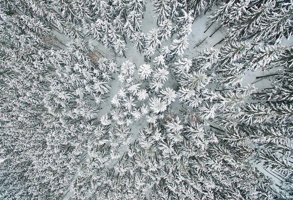 13. Зимняя дорога. Восточная Германия, 16 января 2017. (Фото Patrick Pleul):