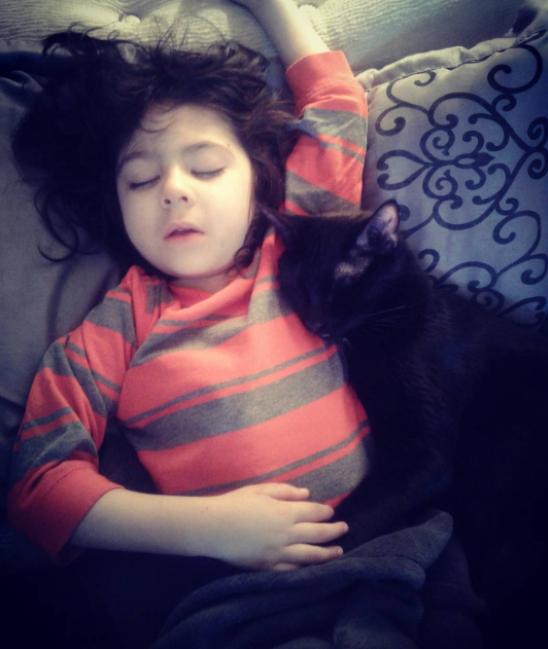 Чёрные кошки любят детей