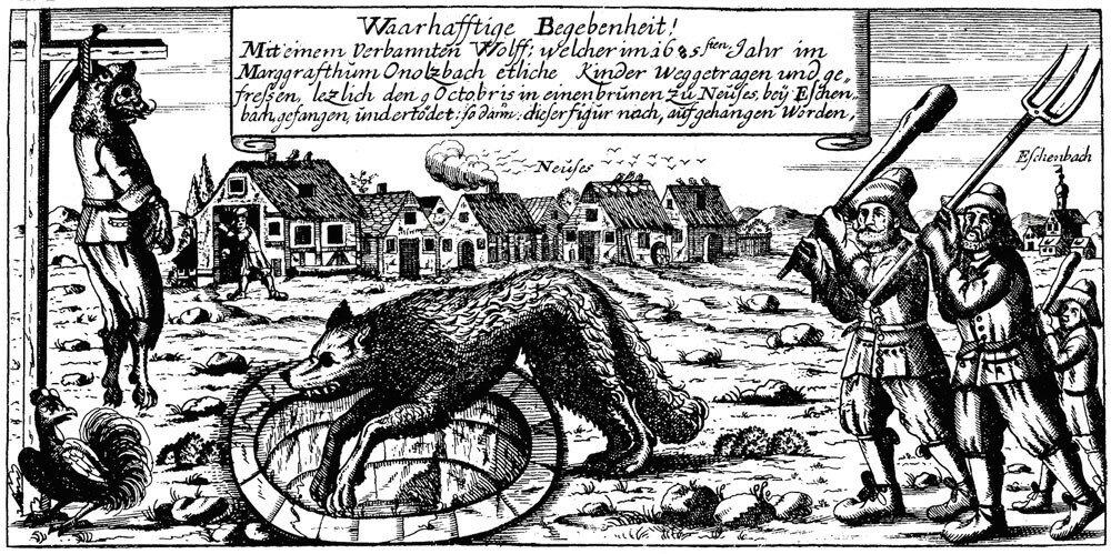 werwolf_von_neuses.jpg
