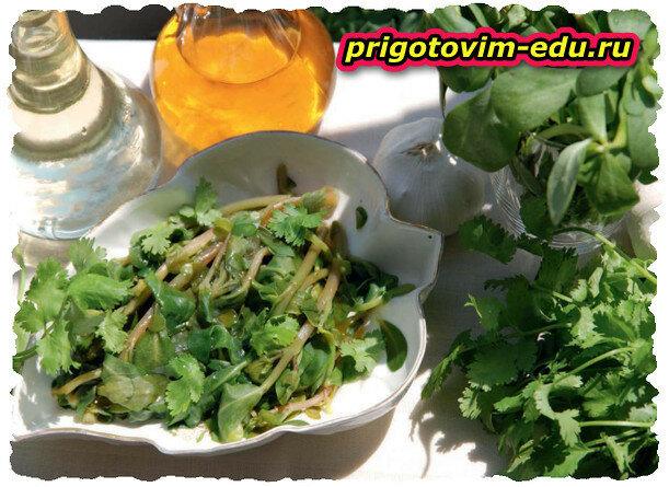Салат из портулака (бандура)